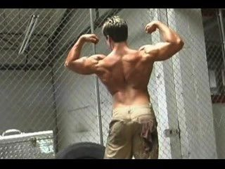 Herr. muscleman - out n in